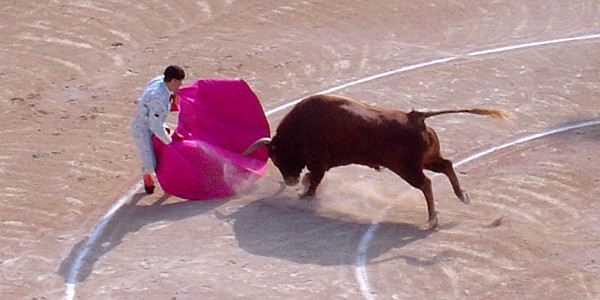 Bull_attacks_matador-600x300