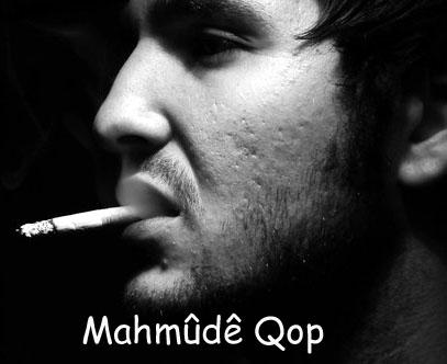 Mahmud Qop Kopie
